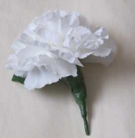 Carnation Button Hole